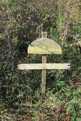 IMG_0906 (hammonton_garden) Tags: 2016 communitygarden fall hammonton southjersey nj gardenstate