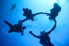 06.11 16 (KnyazevDA) Tags: diver disability undersea padi paraplegia amputee underwater disabled handicapped owd aowd scuba