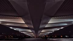 below the spaceship (dan.boss) Tags: calatrava night spaceship bridge valencia puentedelassutdor