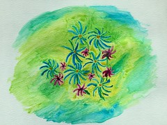 Less than an hour painting at lunch. (f l a m i n g o) Tags: 22274 mine watercolor lunchtime paint flowers amateur