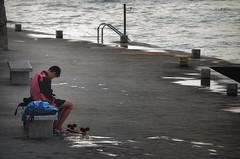 skater (pamo67) Tags: pamo67 skateboard molo pier ragazzo boy acqua water panchina bench seduto sitting stanco tired bagnato wet pasqualemozzillo
