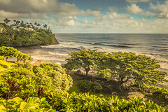 103  untitled shoot   October 30, 2016.jpg (Glewis333) Tags: ocean beach honolii hilo bigisland hawaii hawaii2016