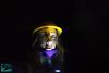 Presenze nella Miniera del Ginevro (Roberto Miliani / Ginepro) Tags: ferro calamita iron mines miniera ginevro elba isola isoladelba hiking trekking walking elbe island ile camminare parconazionale arcipelagotoscano toscana tuscany toskana