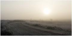 road (HP019873) (Hetwie) Tags: natuur frost rijp nature heide kou ijs pad nachtvorst zandpad zonsopkomst ochtend sunrise strabrecht frozen vorst strabrechtseheide ice road heather lierop noordbrabant nederland