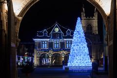 16/365 (LittleBird_01) Tags: 365 christmas lights tree peterborough