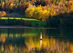 A little sailboat in water surrounded by autumn glow (echumachenco) Tags: lake water reflection sailboat autumn autumncolors yellow green orange red tree forest grass meadow thumsee badreichenhall november berchtesgadenerland berchtesgadeneralpen bayern bavaria germany deutschland serene nikond3100