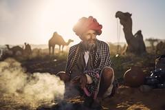 At Pushkar (Akilan T) Tags: offcameraflash sigma35mmart sigma canon5dmk3 canon akilanphotography akilan india rajasthan herder camelfair camel pushkarmela pushkarfair pushkar chennaiweekendclickers cwc561 cwc
