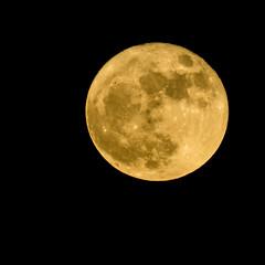 Supermoon_11_14_16 071 (VinceFL) Tags: brunswickga fullmoon luna manfrottotripod moon nikond7100 nikonmll3 outdoors saintsimonsislandga sky supermoon tamron70300mmf456dild12autofocusmacro vincefl