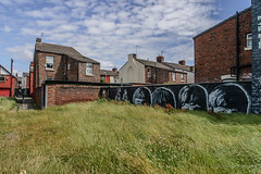 Beatles in the grass (hilofoz) Tags: bootle merseyside england uk