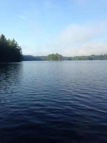 Jamies Pond -  www.amazingfishametric.com