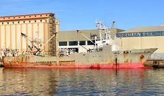 """FUKUYOSHI MARU No.68"" - IMO 8708189 (Rick Vince) Tags: fukuyoshimaruno68 imo8708189 trawler fishingvessel fishingship niigata puertodelaspalmas"