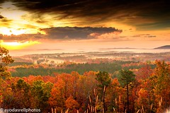 Views from pine mountain #statepark#mountain#scenery#landscapes#landscapephotography#fall#leaves#trees#beauty#placid#striking#breathtaking#sunrise#clouds#lightroom#d750#nikond750 (lnwillia91) Tags: statepark mountain scenery landscapes landscapephotography fall leaves trees beauty placid striking breathtaking sunrise clouds lightroom d750 nikond750