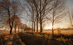 November Sun (Nicola G. Fotografie) Tags: winter november sonne morgen sonnenaufgang dmmerung nrw lndlich dorf feldweg weg natur canon 1018 nature morning countryside lippstadt pathway sunrise