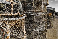 Crab Pots (EVO GT) Tags: canon canonpowershotg5x canong5x england poole coastal harbour crab abandoned abandon pots