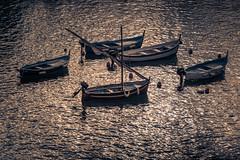 Golden boats (RobMenting) Tags: 70d liguria ligurië travel canon vernazza sea eos boat genua europe harbour canoneos70d building city italia italië architecture