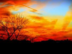 Today New York Sunset (dimaruss34) Tags: newyork brooklyn dmitriyfomenko image autumn fall sky clouds sunset