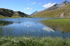 Reflets sur le lac, Italie (RarOiseau) Tags: italie pimont lacdelamaddalena vert calme montagne reflet eu