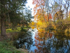IMG_9126 (rpealit) Tags: scenery wildlife nature east hatchery hackettstown