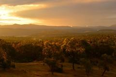 Sunset from Macarthur Hill (~Jek~) Tags: aus australia australiancapitalterritory canberra geo:lat=3540626500 geo:lon=14912375167 geotagged macarthur macarthurhill