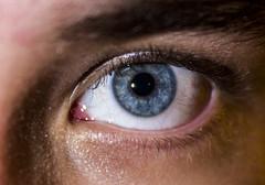 Blue eyed Ben (pruzsiaron) Tags: blue macro eye eyes ben