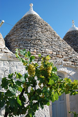 "trulli (5) <a style=""margin-left:10px; font-size:0.8em;"" href=""http://www.flickr.com/photos/118782612@N04/15088436554/"" target=""_blank"">@flickr</a>"