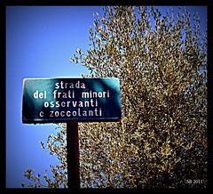 Strada dei Frati Minori (STEVE BEST ONE) Tags: road italy lake lago island nikon strada italia maggiore minori umbria trasimeno isola frati 2011 d3100