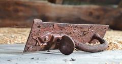 Rusty Handle (Krissy-Anne ) Tags: door old abandoned handle rust rusty