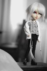 Tou (mymuffin_15) Tags: doll dal carving full wig pullip custom hime usagi tantus isul touya usagihime taeyang