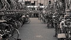 The Hague, Holland. Citywalk (Jan Bierens) Tags: urban blackandwhite bw black station 50mm streetphotography streetlife denhaag thehague citywalk straat straatfotografie streetphotographyblackandwhite d5100