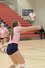 DJT_4028 (David J. Thomas) Tags: college sports athletics women volleyball arkansas bison scots naia batesville hardinguniversity lyoncollege