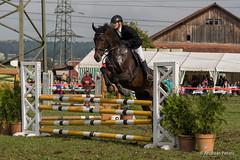 DSC05747_s (AndiP66) Tags: horse oktober macro sports sport schweiz switzerland mark sony luzern sp ii di if alpha tamron concours 77 pferd equestrian derby f28 ld horsejumping 70200mm wettbewerb 2014 springen eschenbach kantonsolothurn inwil reithof springreiten cantonsolothurn stleodegar andreaspeters pferdespringen 77m2 a77ii ilca77m2 77ii slta77ii