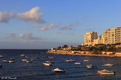 010188 - Malta (M.Peinado) Tags: copyright canon mar barco barcos malta 2014 marmediterrneo canoneos60d islademalta 01092014 septiembrede2014