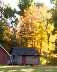 Log Cabin at the Lake (lclower19) Tags: autumn trees light painterly yellow backlight gold log cabin nikon massachusetts filter monson pse orton 18200mm d90 assignment52392014
