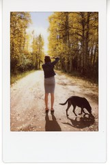 Milo and friends (Lindsey G (modchik)) Tags: road dog fall glow aspens polaroidmio instax instaxmini littledoglaughedstories