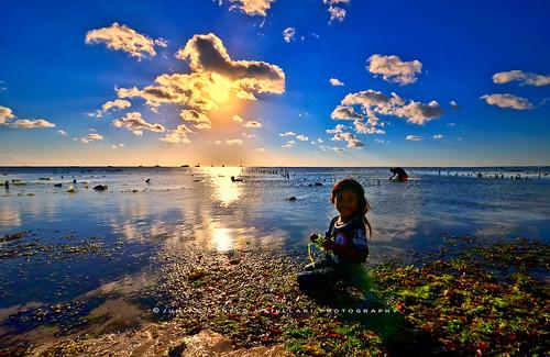 Seaweed farmer in Rote Island