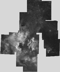 ngc7000-pelican deneb.miroir horizontal (jacques.walliang) Tags: astrometrydotnet:status=solved astrometrydotnet:id=nova888480