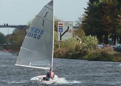 Windy Sunday 010