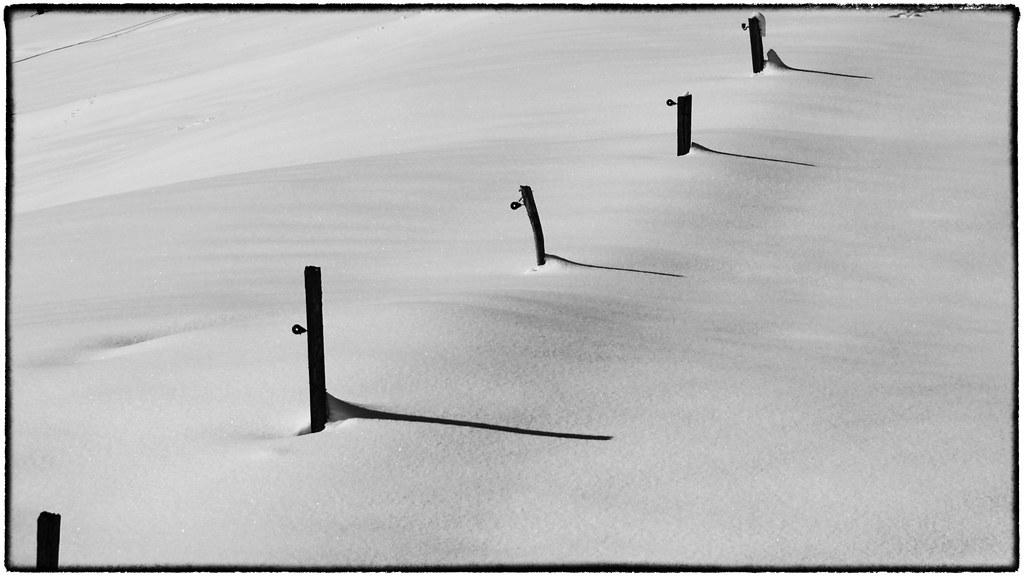 IMG_0233_Snapseed