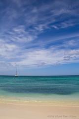 Palm Beach, Aruba (RafaelPintoH) Tags: travel blue sea verde green beach beauty azul canon word photography mar picture aruba viajes fotos palmbeach mundo playas belleza caribe fotografas canon60d
