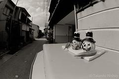 いつものポスト / The Usual Post (Takeshi Nishio) Tags: nikonfm3a 白黒 fujiacros100 o56 ei100 フィルム 16mmfisheye ネガ いつものポスト spd1120deg65min filmno800