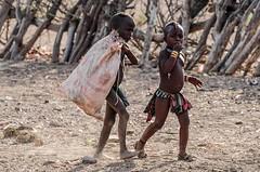 namibie-43 (stephanelhote) Tags: animaux parc etosha afrique namibie éléphants zambie himbas guépards