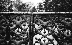 First Snow at Ashland, Henry Clay's Estate, Lexington, KY (bclook) Tags: 3 snow kodak lexington trix 400 konica af selfprocessed ashland hexar ilfosol