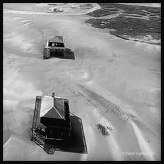 OMBRES DE CABANES ... VUE DE MOUETTE (pascalbordeaux33) Tags: noiretblanc cabanes ileauxoiseaux arcachon tchanque arien mouette