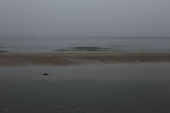still (Mindaugas Buivydas) Tags: lietuva lithuania color october autumn fall morning fog mist sea seaside balticsea pajrioregioninisparkas pajrisregionalpark mood moody minimal minimalism wave calm silence abstract sadnature immensity meditation meditative