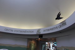 Entrance Hall (demeeschter) Tags: canada yukon territory whitehorse beringia interpretive centre museum heritage archaeology palaeonthology history attraction science