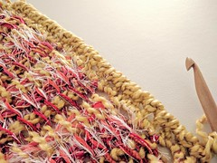IMG_20161028_123531 (stitchdiva) Tags: tunisiancrochet stashbusterblanket stashbuster stashbuterblanket crochet