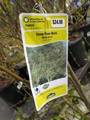 IMG_1418 (pbinder) Tags: 2016 201603 20160322 march mar tuesday tue kansas city missouri kansascity kansascitymissouri kc mo kcmo lowes plants
