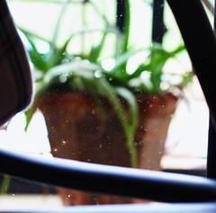 Blurred . . . . #mumbaidiaries