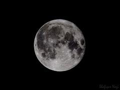 full moon last night (kiki nagi) Tags: moon fullmoon supermoon satellite astronomy nikond72000