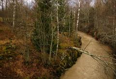 ylisjarvi07 (Kola-apsa) Tags: ylisjrvi muurla salo koskenjoki river